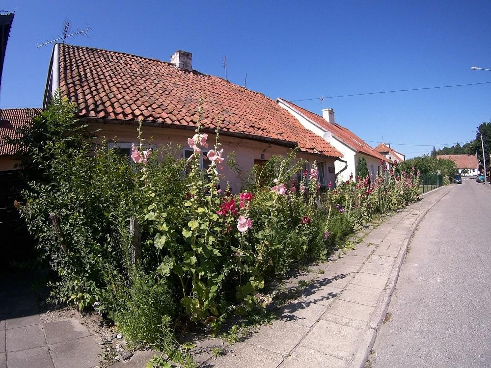 Stary dom w kwiatach na ulicy Starej Frombork