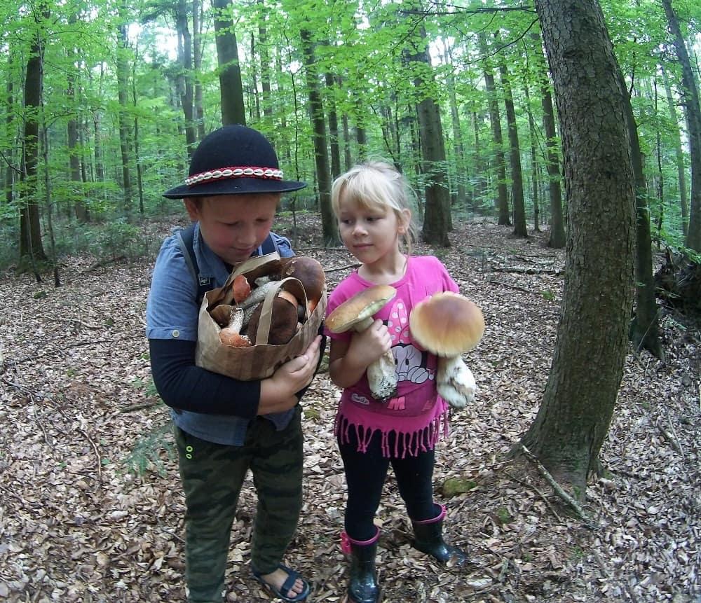 Chłopiec z torbą grzybów. Obok dziewczynka patrzy na pełną torbę, w dłoniach trzyma dwa dorodne prawdziwki.