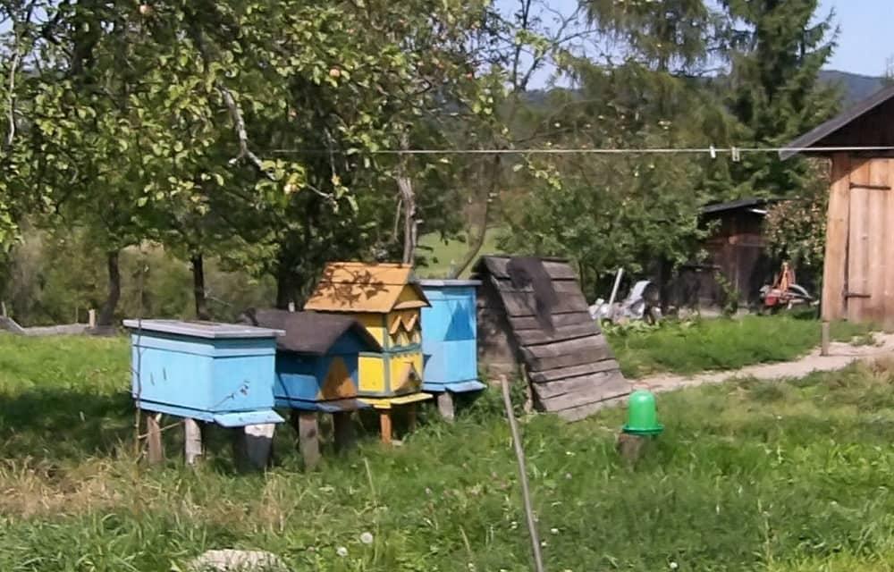 Ule w gospodarstwie Łemkowskim.  Niebieski z płaskim daszkiem, niebiesko-żółty z daszkiem dwuspadowym, żółty z daszkiem dwuspadowym