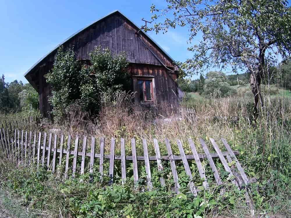 Sara drewniana i zarośnięta chata, przed nią drewniany płot obalony starością.