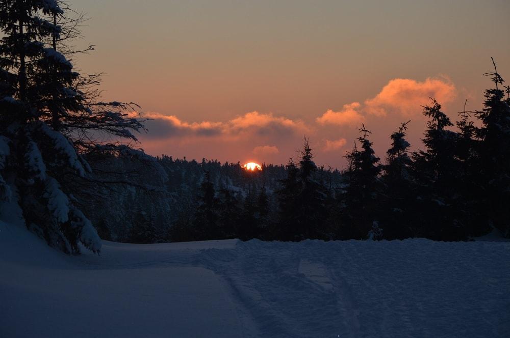Zachód słońca. Czerwona kula chowa się za choinkami. Na pierwszym planie śnieg ugnieciony nartami biegaczy i butami turystów.